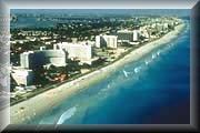 I Love Miami!
