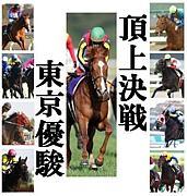 ガックシPOG倶楽部2011