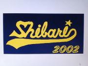 ☆SHIBARI☆2002