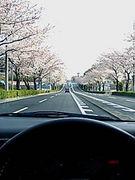 ドライブ DE 幸せ