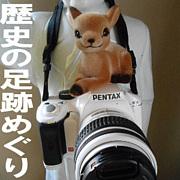 奈良・歴史の足跡めぐり&カメラ