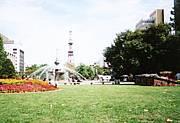 札幌大通り公園が好き