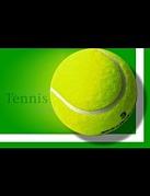 市原市でテニス