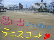 昭和高校女子テニス部(硬)