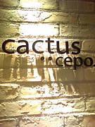cactus・・cepo.京都TheCUBE店