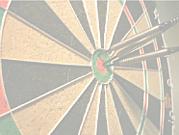 DARTS CIRCLE 501