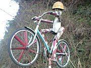 鹿児島大学サイクリング部
