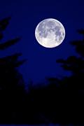 月ひとしずく