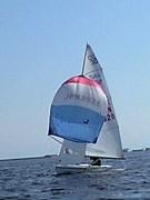 甲南大学体育会ヨット部