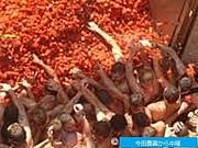 今田農園でトマト祭りを。