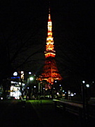 ☆夜のお散歩隊☆