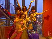 カマロ♂♀ベリーダンス