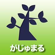 新宿二丁目「がじゅまる」