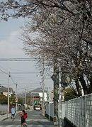 高知市立小高坂小学校