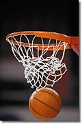 栃木のバスケ