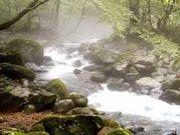 ふるさとの名水めぐり栃木県
