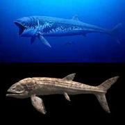 巨大魚 リードシクティス