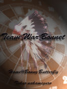 Team War Bonnet