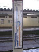 湘南新宿ラインの乗客