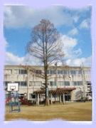 倉敷市立柏島小学校