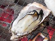 【東京】牡蠣の使いコミュ