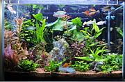 小型美魚の部屋