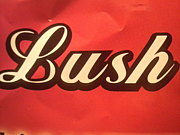 Girl's Bar  『Lush』