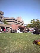 法政大学2011 経済 4年S組