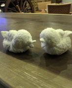 ひよこと羊