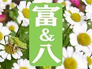 トミハチ☆富ヶ谷&代々木八幡
