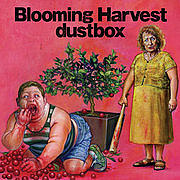 Blooming Harvest◎dustbox