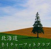 北海道 ネイチャーフォトクラブ