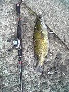 上越de釣り釣り釣り  team.G3