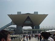 MTG IN 神奈川