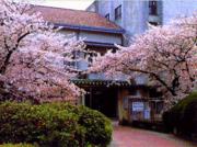 大阪府立佐野高校国際教養科
