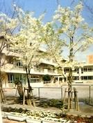 品川区立八潮小学校