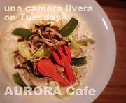 愛の菜食 AURORA Cafe