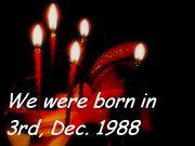 1988年12月3日生まれのヒト