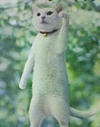 アフラックの猫が怖い