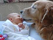 子供や動物に好かれる♪