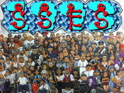 SSES1993