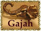 HAIR MAKE Gajah
