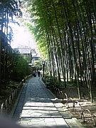 東京近場温泉