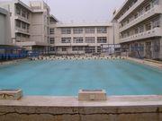 千葉東高校 水泳部