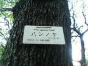 小石川白山ギターカルテット