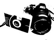 PHOTO BUGS(仮)