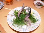 いわし料理 かぶき 神田北口店