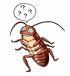 俺ゴキブリだけど何か質問ある?