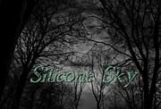 Silicone Sky