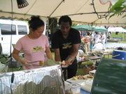ジャマイカ料理     と酒